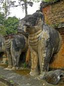 วัดช้าง อุทยานประวัติศาสตร์กำแพงเพชร อ.เมือง จ.กำแพงเพชร